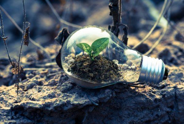 eco-materials